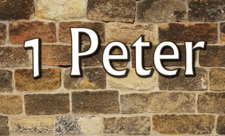 1 Peter 2:11-24 (21 October 2018)